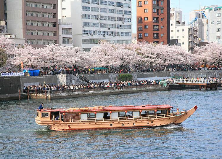 4. สวนซุมิดะเขตไทโต (Sumida Park (Taito-ku))