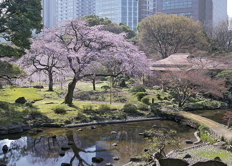 8:小石川後樂園