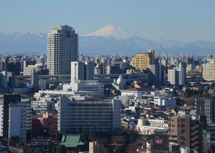 一边用餐一边欣赏富士山的景色