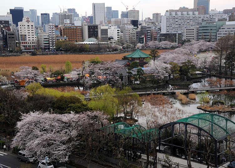 เหตุผลที่มีชื่อเรียกอีกชื่อว่า Ueno no Yama(ภูเขาแห่งอุเอโนะ)คือ?