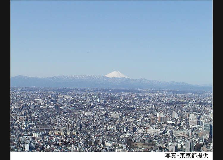 從東京都廳的特別展望台眺望的景色