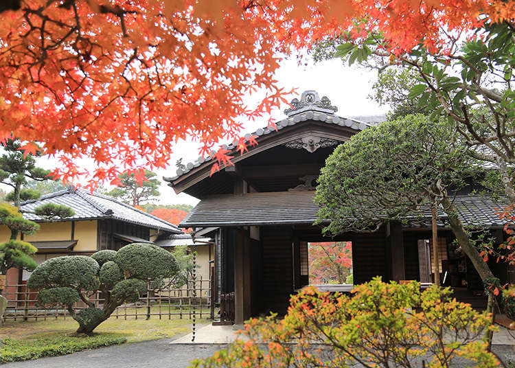 滿是古老名家風情的佐倉藩最後一棟藩主宅邸