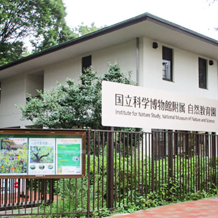 The Institute for Nature Study