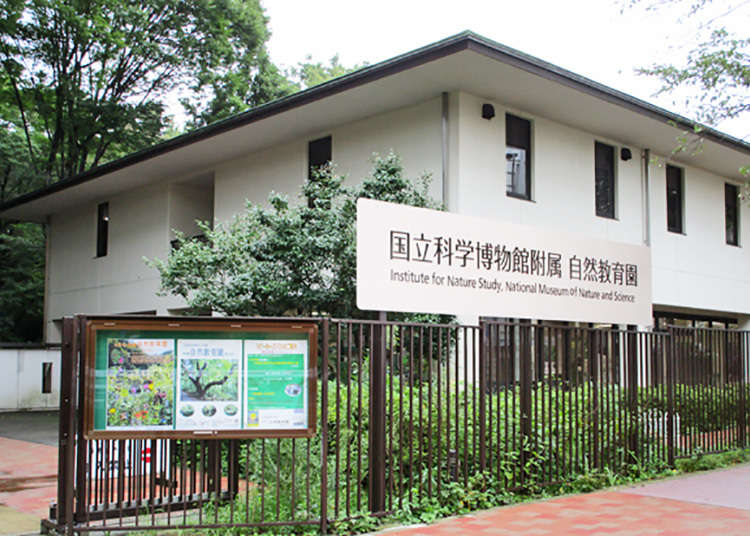Institute for Nature Study by National Museum of Nature and Science