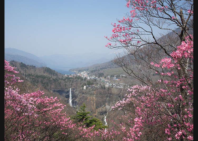 Tempat Anda Dapat Memandang Kebesaran Alam Nikko