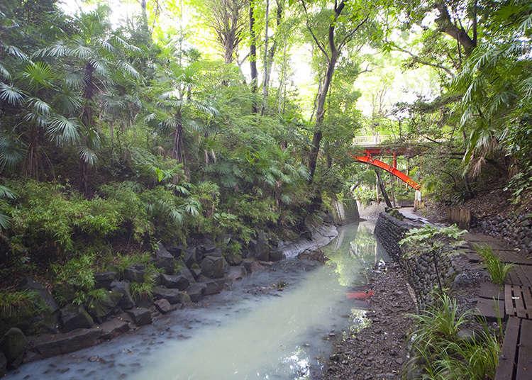 緑深い東京23区内唯一の渓谷を散策
