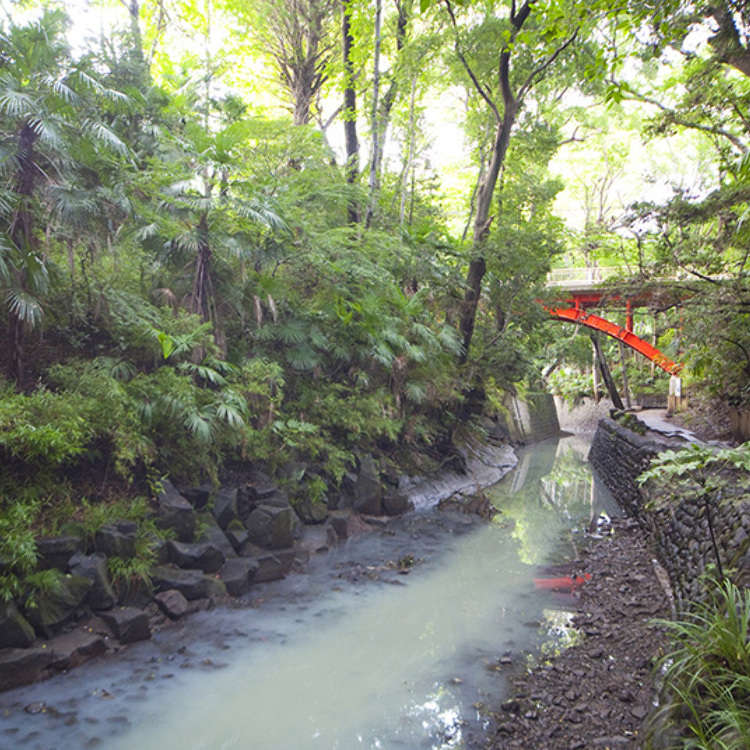 散步在东京23区里唯一一处绿意盎然的溪谷
