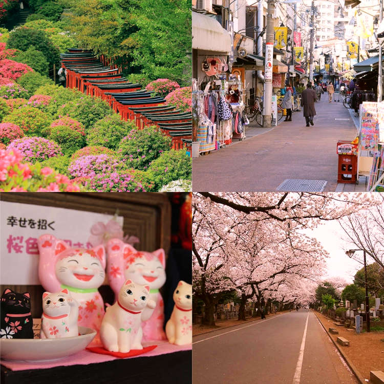 10 Things To Do in Yanesen (Yanaka, Nezu, and Sendagi)