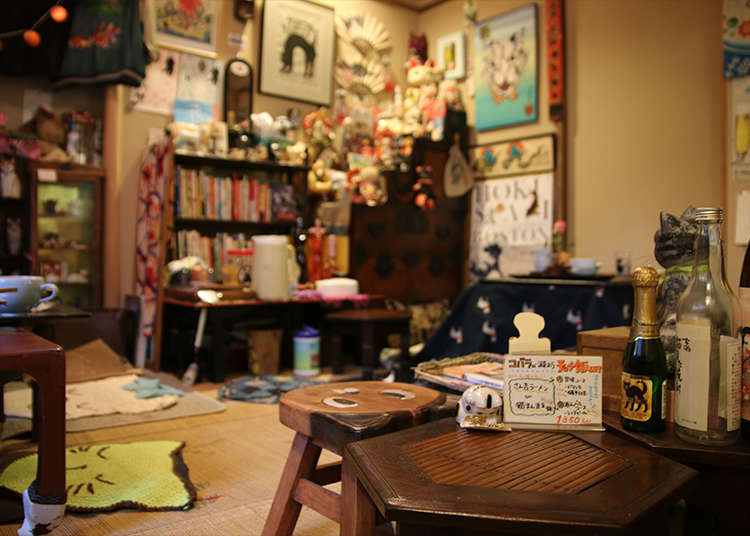 Unwind and Experience Japanese Daily Life (and Cats!) at an Old Japanese Folk House Cafe in Yanaka