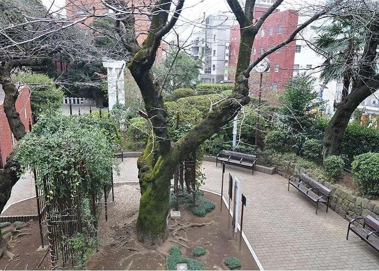 สถานที่ที่สามารถสัมผัสกับกลิ่นอายสไตล์ญี่ปุ่นได้ในรปปงงิ
