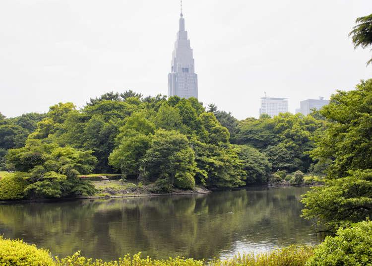 在新宿能夠感受綠意的景點