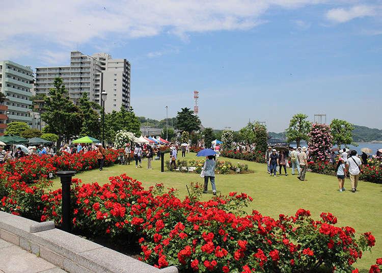 Gaya taman Perancis menghadapi Pelabuhan Yokosuka