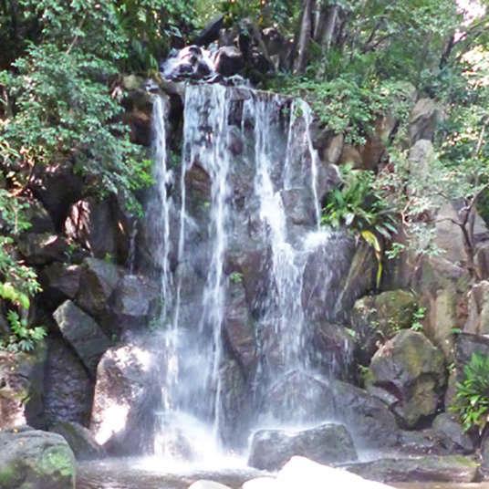 在公園裡有瀑布!?在車站附近的療癒系卻不為人知的綠洲