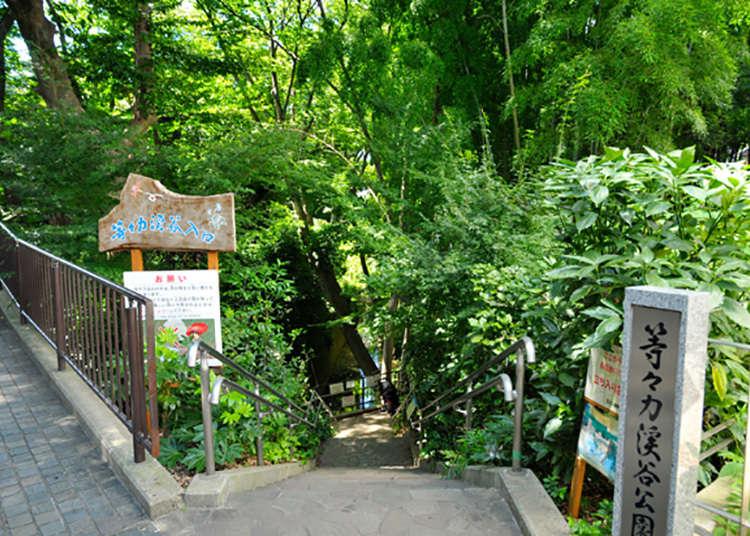 도쿄 도내의 유일한 계곡! 희귀한 자연 명소