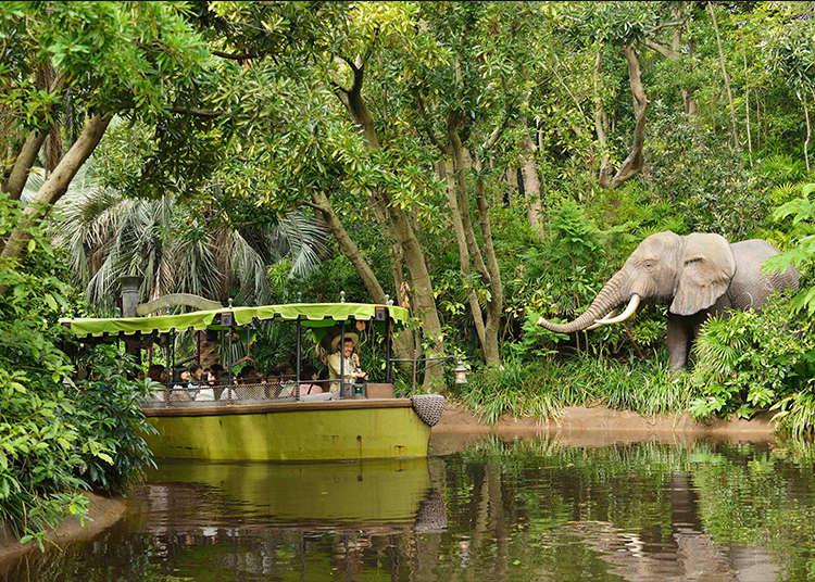 '정글 크루즈'에서 본격적인 모험을