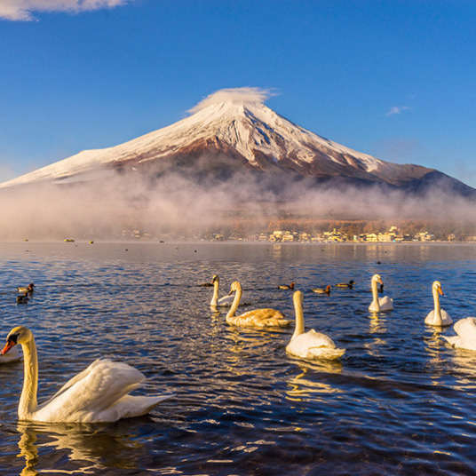 All About the Climate in Japan