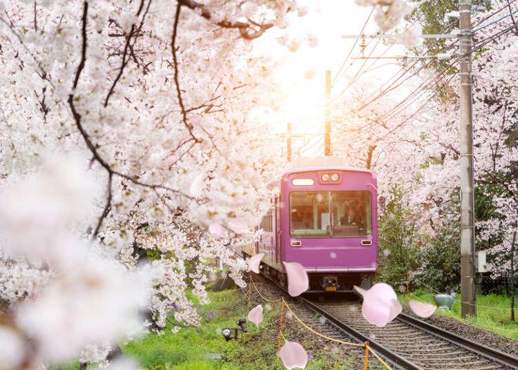 Amat diperlukan untuk bergerak! Mari kita menguasai cara menaiki kereta api di Jepun.
