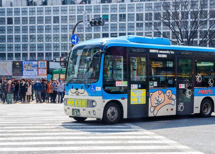 旅行の移動に欠かせない バスの利用方法