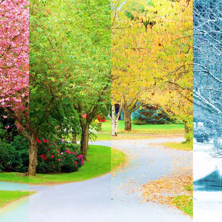 日本の四季と気候