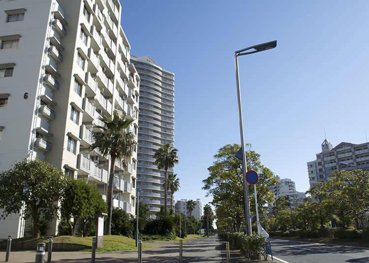 Kota Urayasu
