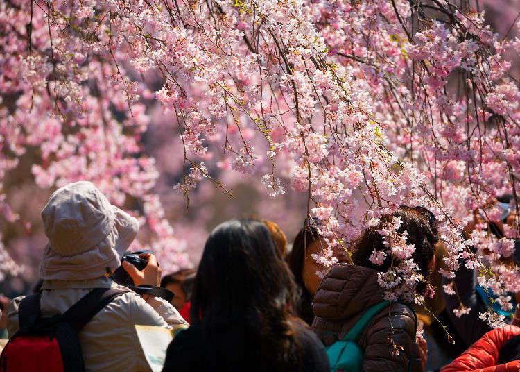 ถ้ารู้แล้วจะยิ่งสนุกมากขึ้นกับเรื่องน่าแปลกประหลาดของสภาพอากาศญี่ปุ่น !