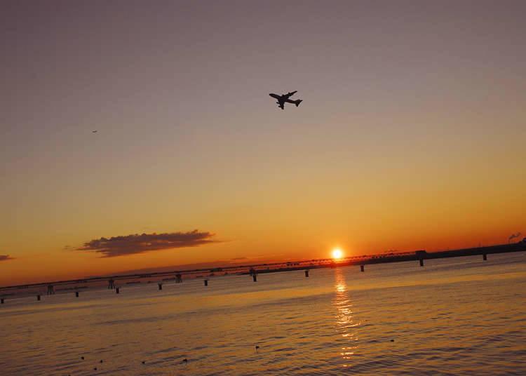 享受东京海湾的黎明景色