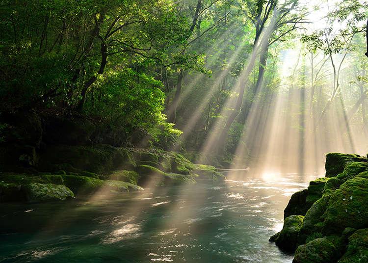 Alam dan Lanskap