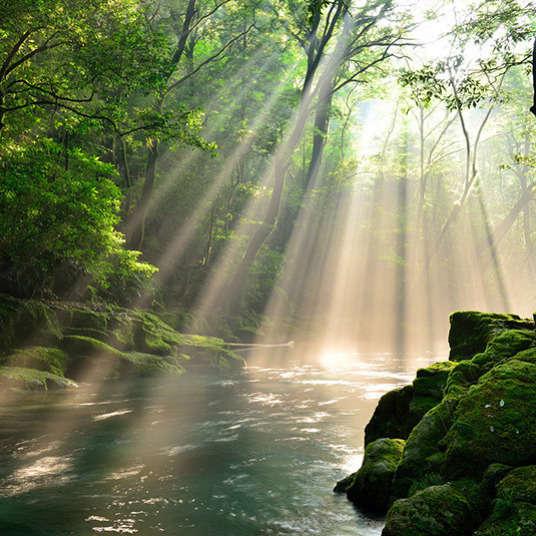 Alam semula jadi dan pemandangan