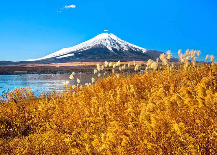 日本的群山