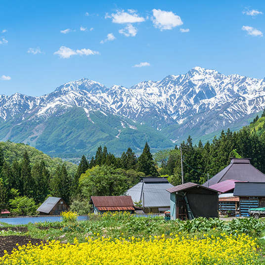 Shinrin (Hutan) dan Sangaku (Gunung-ganang)