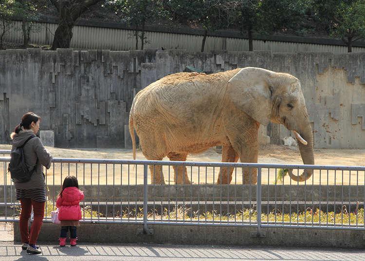 동물원, 수족관
