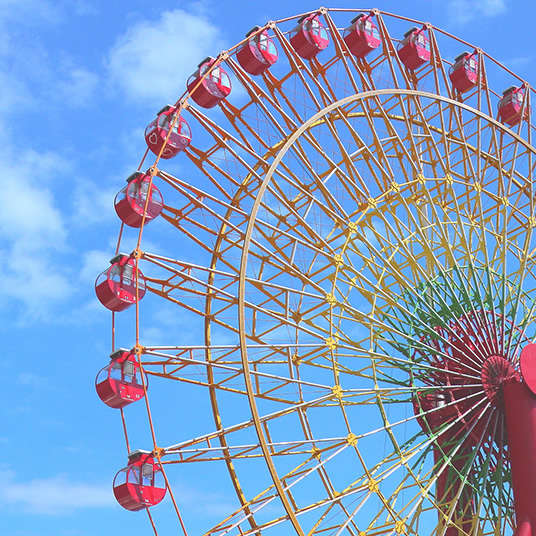 Amusement Parks and Facilities