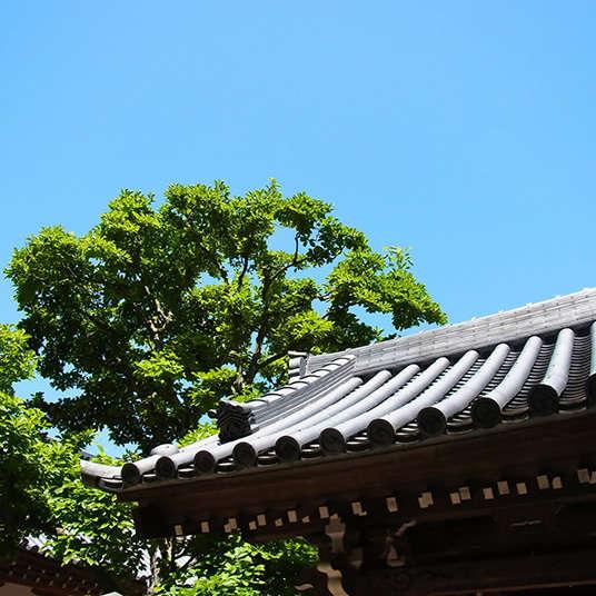 Jiin (kuil Buddha)