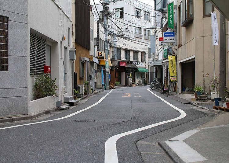 뱀이 지나간 것처럼 구불구불한 구획 경계 도로