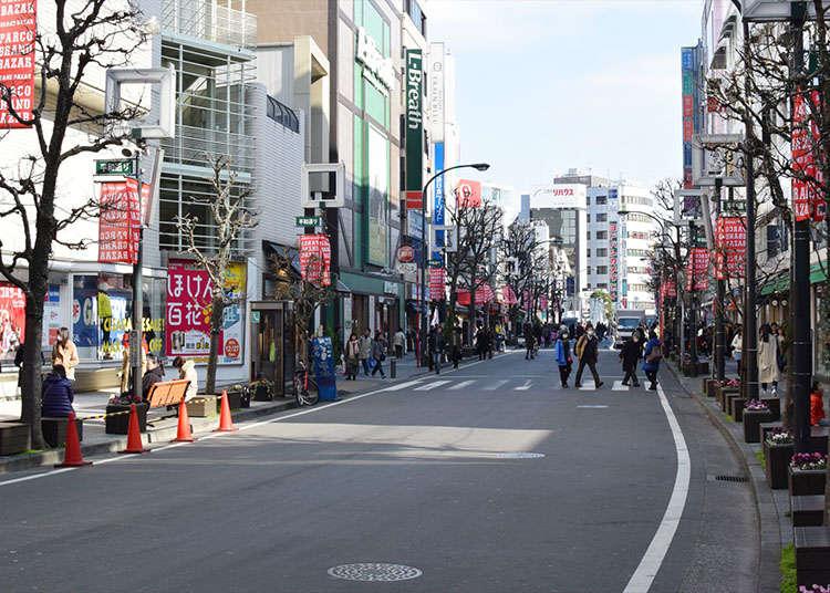 於3小時內享受遊覽吉祥寺周邊街道的樂趣!