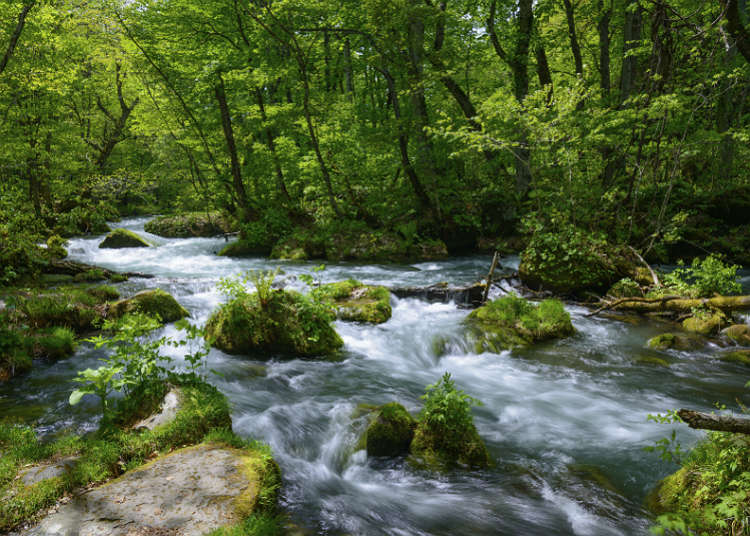 Valley, mountain stream, river and lake