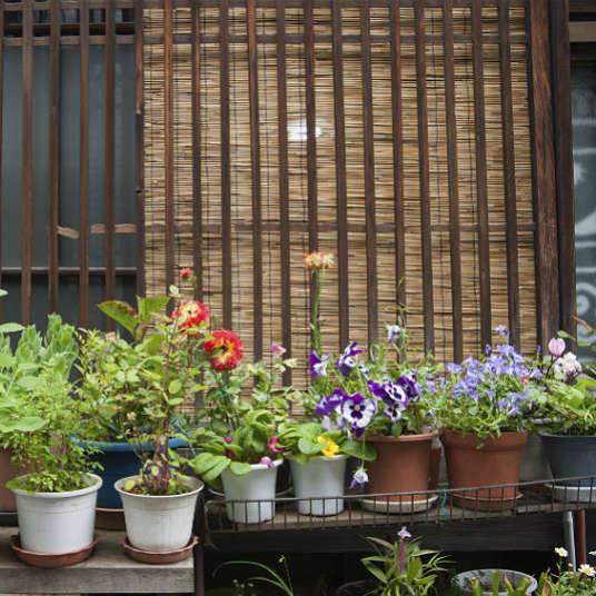 "Mengenal ""Shitamachi"", Kota Lama di Jepang"