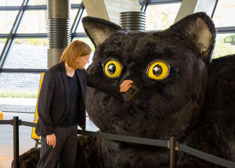 검은 고양이가 맞이한다