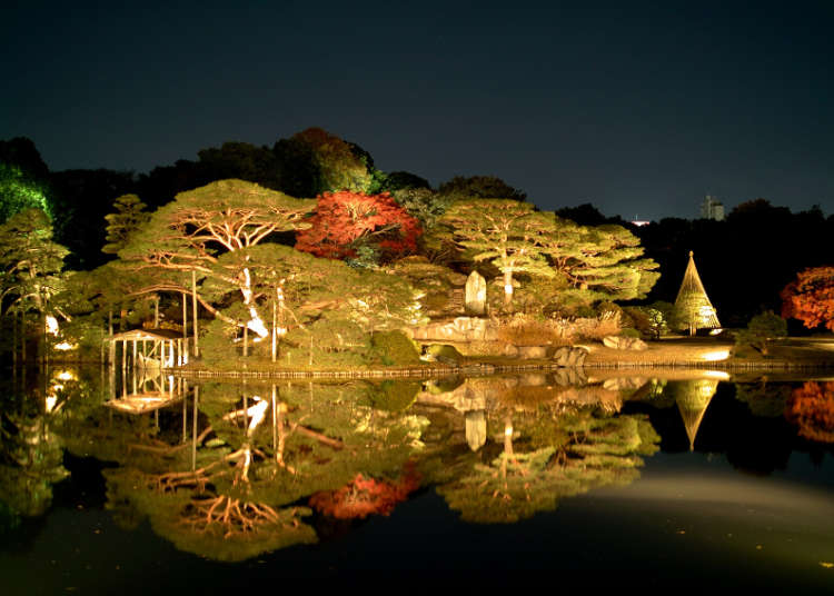 A Beautifully Lit Up Feudal Lord Garden