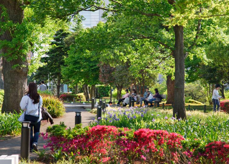 나무들과 잔디가 펼쳐지는 휴식의 장