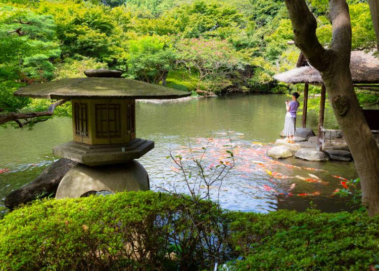 【MOVIE】擁有美麗日本庭園的八芳園