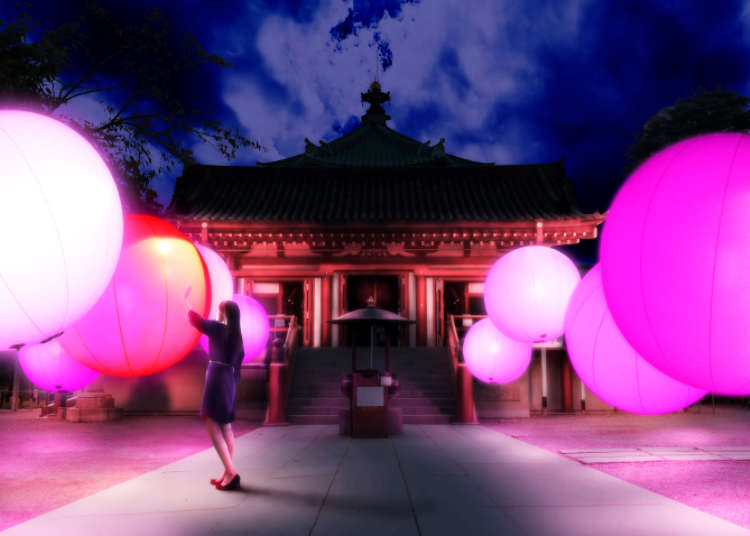 上野「文化の杜」にて日本文化とアートイベント「TOKYO 数寄フェス」開催