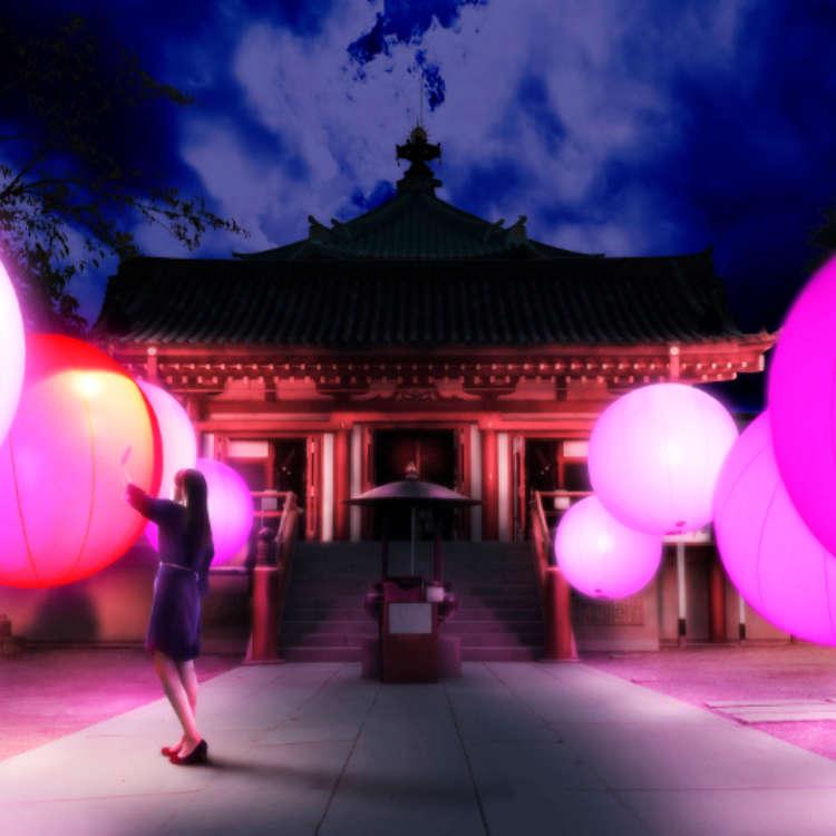 """""""Tokyo Suki Fes"""": Japanese Culture and Arts at Ueno Cultural Park"""