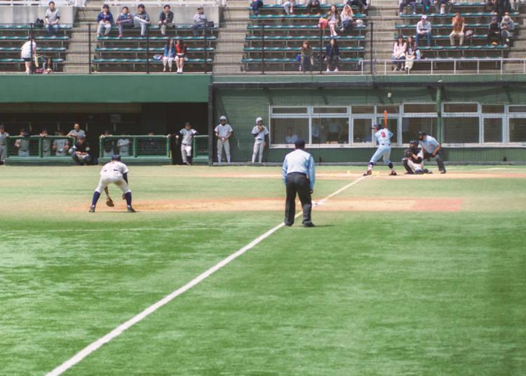 日本のプロ野球チーム