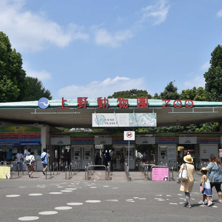 Ueno Zoo: Visit Tokyo's Oldest Zoo