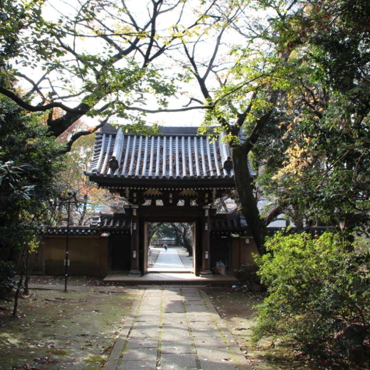 雜司谷:東京不為所知的另一面
