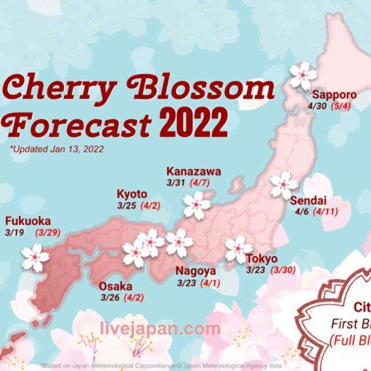 2017년-일본의 벚꽃 전선