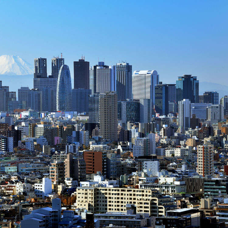 The One-Day Tour of the Tokyo Skyline