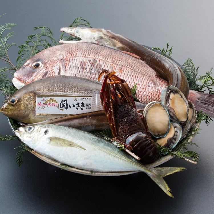 新鲜的其他 生鱼片、鲜鱼本日08:00到货