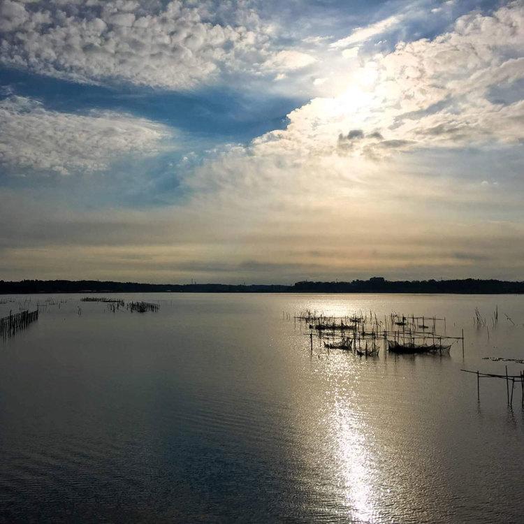 印旛沼とその流域